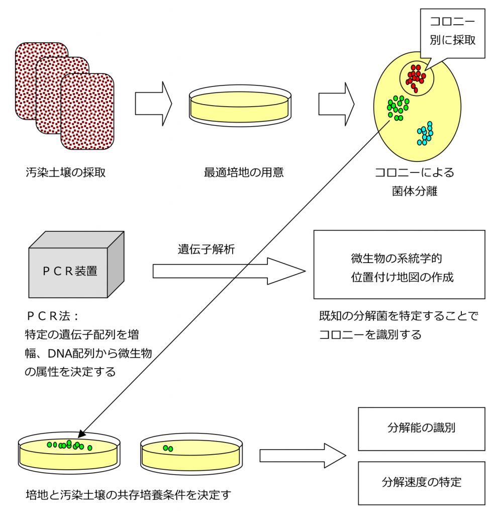 バイオスティミュレーションPLUS実施の手順