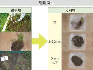 選別例1 雑草類